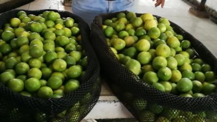 Precio del saco del limón se incrementó hasta en un 400 % en mercados lambayecanos