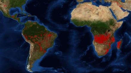 África también arde: ¿Por qué sus incendios no son comparables con los de la Amazonía?