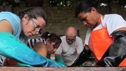 Ecotintes: empresa peruana incentiva el uso de insumos naturales en el proceso de teñido