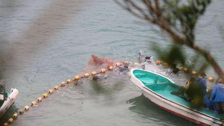 Inicia la temporada más controversial de Japón: la caza de delfines [VIDEO]
