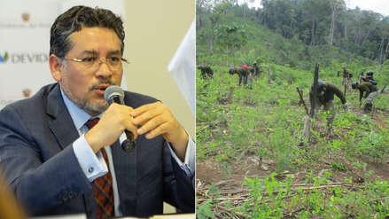 Devida anuncia erradicación de hoja de coca ilegal en zonas del VRAEM