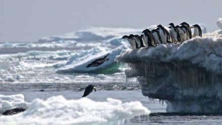 La mayor expedición científica parte hacia el Ártico para estudiar el cambio climático