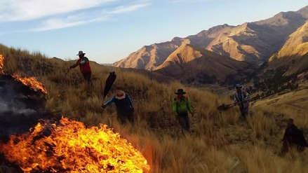 Dos hombres fueron detenidos por originar incendios forestales en Cusco