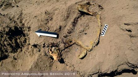 Arqueólogos peruanos hallan los huesos de un perro enterrado hace 1,000 años
