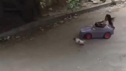 """""""Rápida y furiosa"""": Habló la niña que se hizo viral por atropellar a un gato en México"""