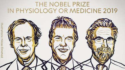 Nobel de Medicina para tres investigadores que estudian las células y su necesidad de oxígeno