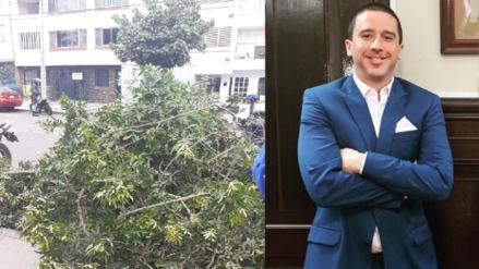 Multan a Mijael Garrido Lecca por poda de un árbol que cubría su cartel de campaña