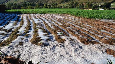 Ministro Walter Martos advierte que las lluvias pueden afectar la llegada del material electoral