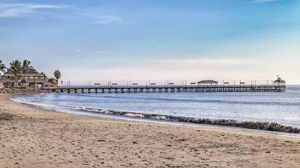 Playas de Trujillo lucen limpias y con mayor presencia de especies marinas