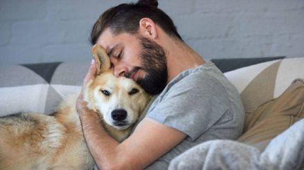 Cuarentena: ¿Cómo ayuda una mascota a quienes sufren de depresión?