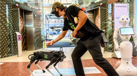 Un perro robot distribuye gel para las manos en un centro comercial en Tailandia [FOTOS]