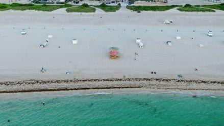 Miami: Un grupo de tiburones fueron avistados cerca a la orilla de playa tras reapertura