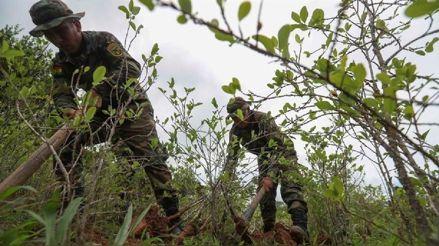 Un pueblo se levanta ante el narcotráfico que actuaba durante cuarentena en Bolivia