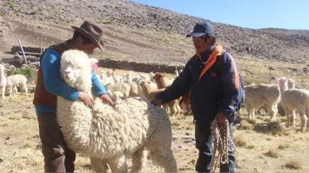 08 de julio   Perú al día: El resumen de las noticias regionales
