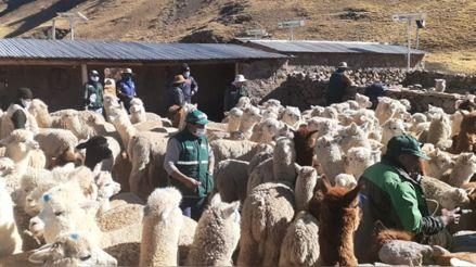 29 de julio | Perú al día: El resumen de las noticias regionales
