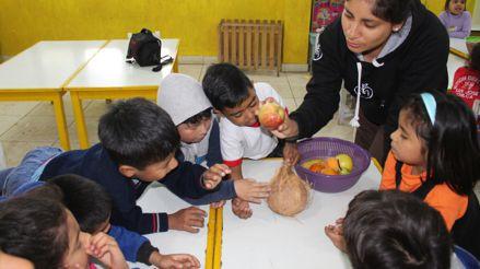 Iniciativa educativa promueve la buena alimentación y lucha contra la anemia