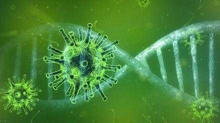 Estos son los seis tipos de coronavirus y sus síntomas explicados por el doctor Elmer Huerta