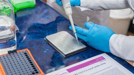 Coronavirus en el mundo | EN VIVO hoy, 7 de agosto de 2020: Latinoamérica se convirtió en la región más afectada por la pandemia, tras superar en número de muertes a Europa | Últimas noticias COVID-19