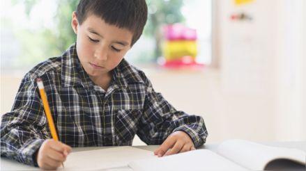 Seis alimentos para el desarrollo del cerebro de las niñas y niños