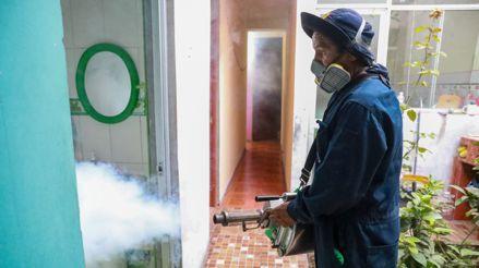 ¿Cómo se transmite el dengue? [Audiogalería]
