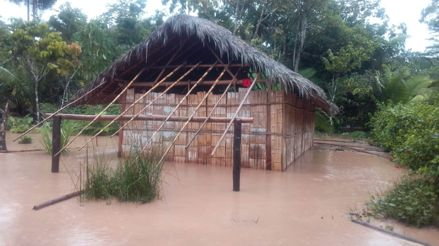 Amazonas: Casas y terrenos de cultivo inundados por desborde del río Cenepa