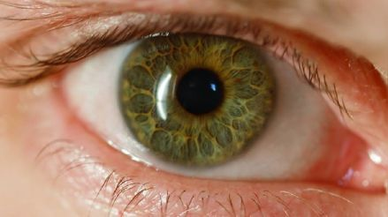 Fatiga visual: ¿Por qué se ha convertido en una molestia tan común durante la pandemia?
