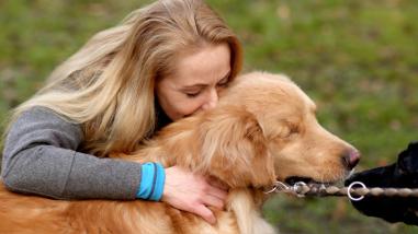 Cuando el perro muere, ¿cuánto esperar para acoger a la próxima mascota?