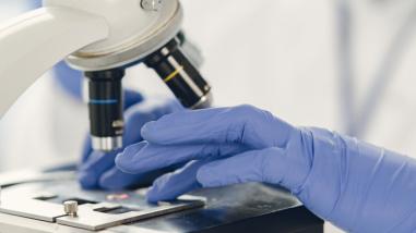 Día Internacional de los Microorganismos: sin ellos, usted no estaría leyendo esteartículo