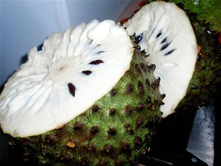 como se toma solfa syllable custard apple pregnancy el cancer