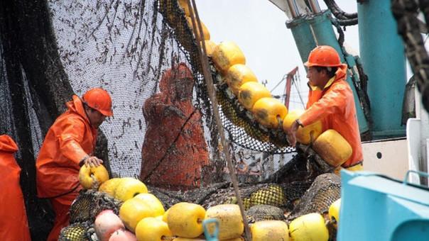 Pesca de anchoveta.