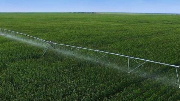 Asi lucen las tierras de Olmos, a un año del inicio de las obras de irrigación.