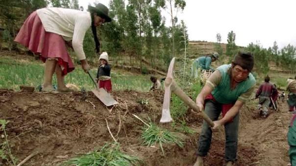 Agricultura de Cusco