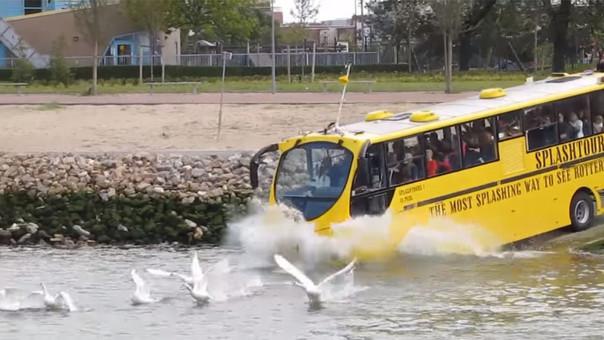 Estos buses entraron en funcionamiento en el año 2010