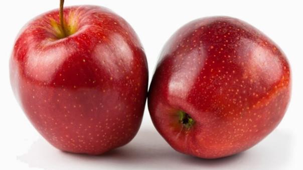 Sierra Exportadora promoverá cultivo de nuevas variedades de manzanas.