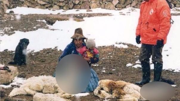 Bajas temperaturas provocan estrago en zonas alto andinas.