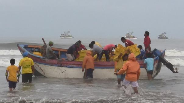 Hombres de mar capturaron gran cantidad de caballa