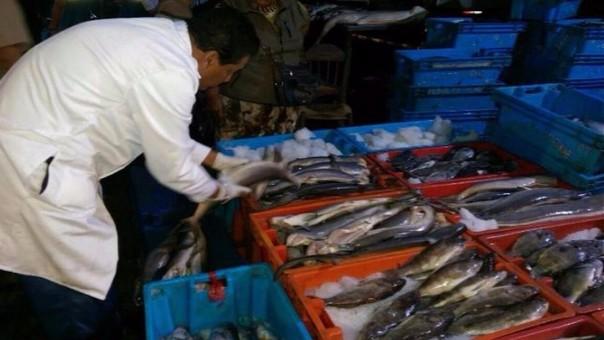 Trujillo: denuncian que terminal pesquero es antihigiénico