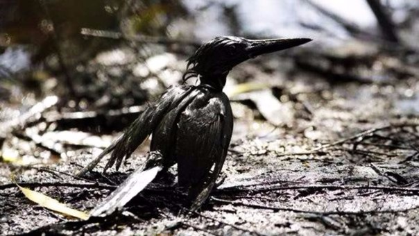Estos fueron los últimos derrames de petróleo en el Perú