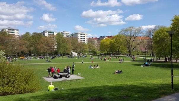 La policía y sus amigos disfrutaba de un día de sol en este parque de Estocolmo