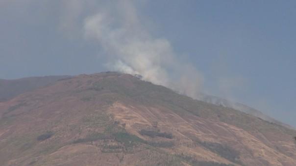 Incendio en cerro de Santa Ana.