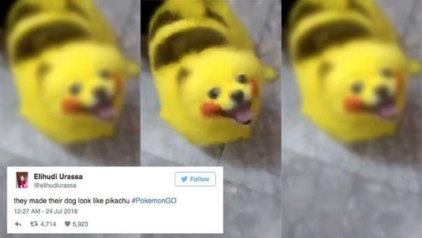 Perro Pikachu