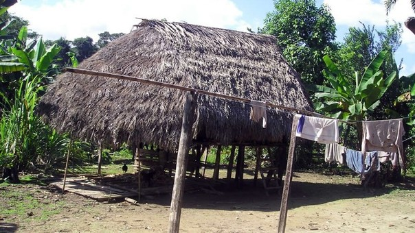 Comunidades nativas del distrito de Echarati viven en extrema pobreza y necesitan de ayuda.