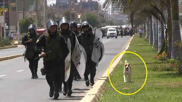 Pinto corre junto con agentes durante marcha