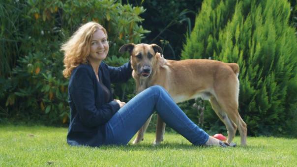 La historia de Rubio, el perro callejero argentino