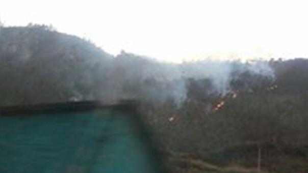 Incendio forestal Palca