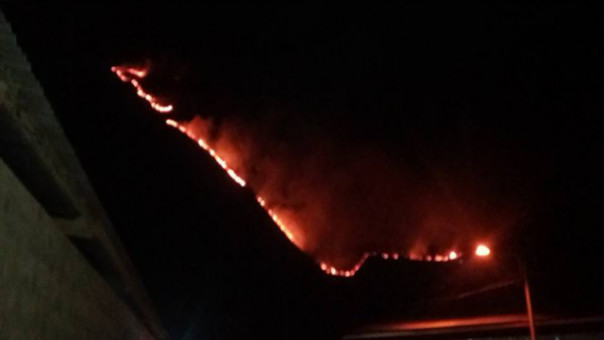 Incendio forestal en Collpani