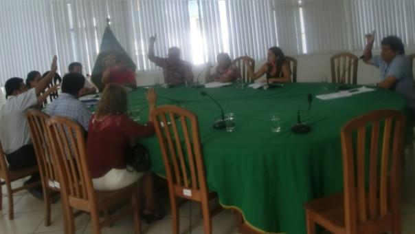 Sesión Consejo La Merced
