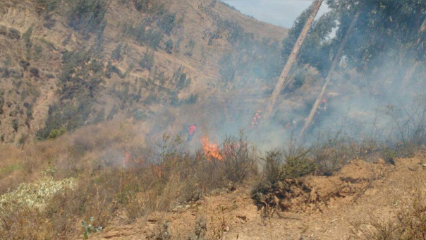 Incendio forestal Tarma