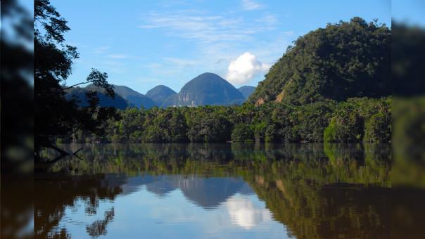 El Parque Nacional Cordillera Azul está en peligro.