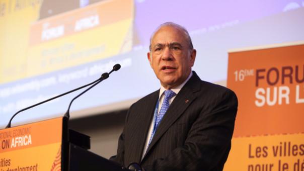 José Ángel Gurría Treviño (México) es el actual secretario general de la OCDE.